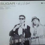 【音楽図鑑】 Trent Dabbs & Amy Stroup / Sugar & The Hi Lows